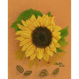 Sunflower 5″x 7″
