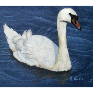 Swan's Lake 8″x 11″