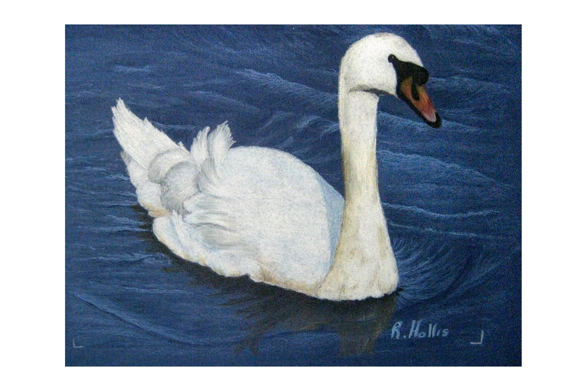 Fauna and Fowl