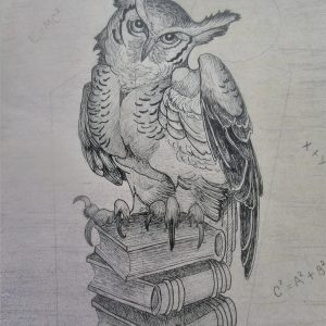 Wise Old Owl 9×12